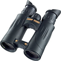 Steiner Discovery 10 x 44